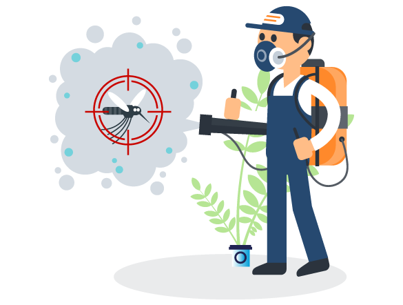 Professional Pest Control Spring Hill